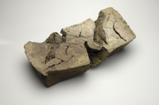 CG Kloostermuseum Aduard Misvormde steen ADN7027@7360 8bit 300dpi web