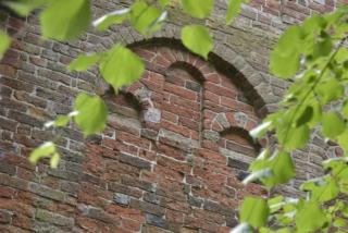 CG Godlinze Pancratiuskerk 8105960 011@7360 8bit 300dpi web