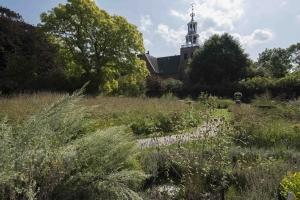 Petruskerk Pieterburen